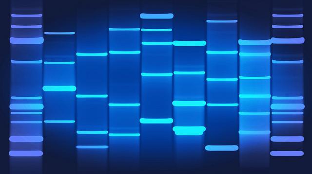 Genetics and RHD risk